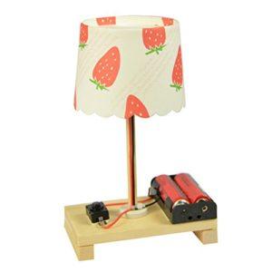 Stobok Lampada Da Tavolo Esperimenti Scientifici Tecnologia Fai Da Te Invenzione Giocattolo Per Bambini Modello Casuale 0
